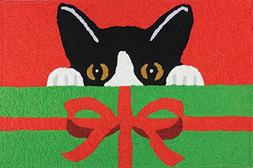 Jellybean Kitty & Present Holiday Décor Indoor Outdoor Wash